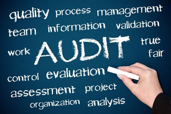 Audit Processes Graphic